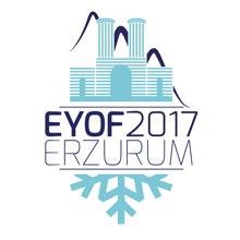 2017 m. Europos jaunimo olimpinis festivalis Erzurume